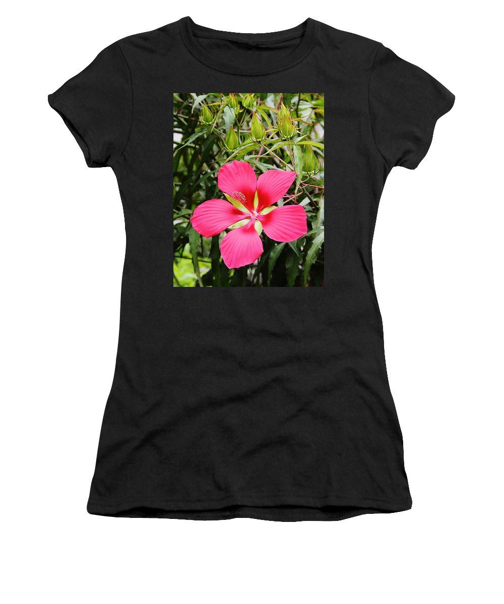 Flower Women's T-Shirt featuring the photograph Red Hibiscus by Allen Nice-Webb