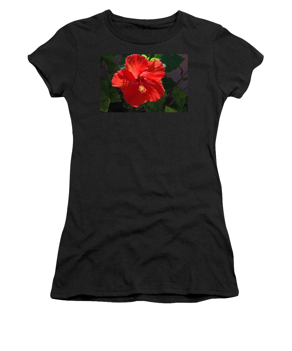 Photography Women's T-Shirt (Athletic Fit) featuring the photograph Red Hibiscus by Susanne Van Hulst