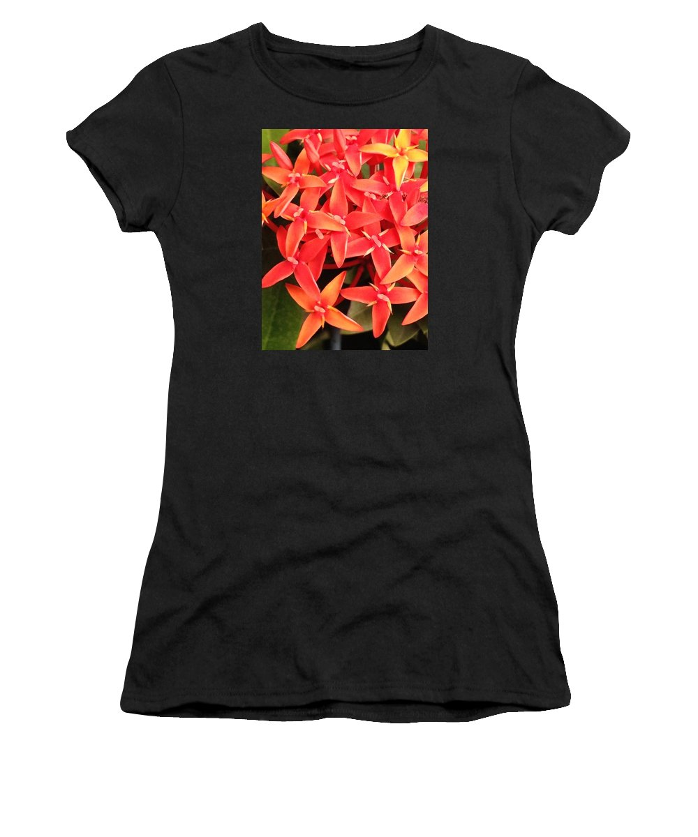 Red Women's T-Shirt (Athletic Fit) featuring the photograph Red Indian Flowers Like Sunshine - Macro Photography by Pritam Shaw