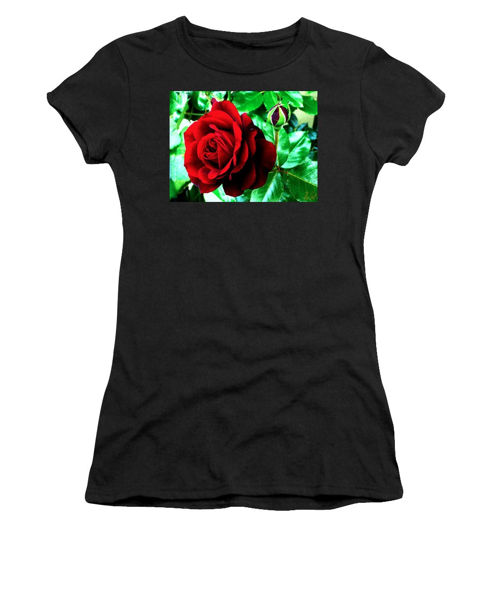 Women's T-Shirt (Athletic Fit) featuring the photograph red Rose by Helmut Rottler