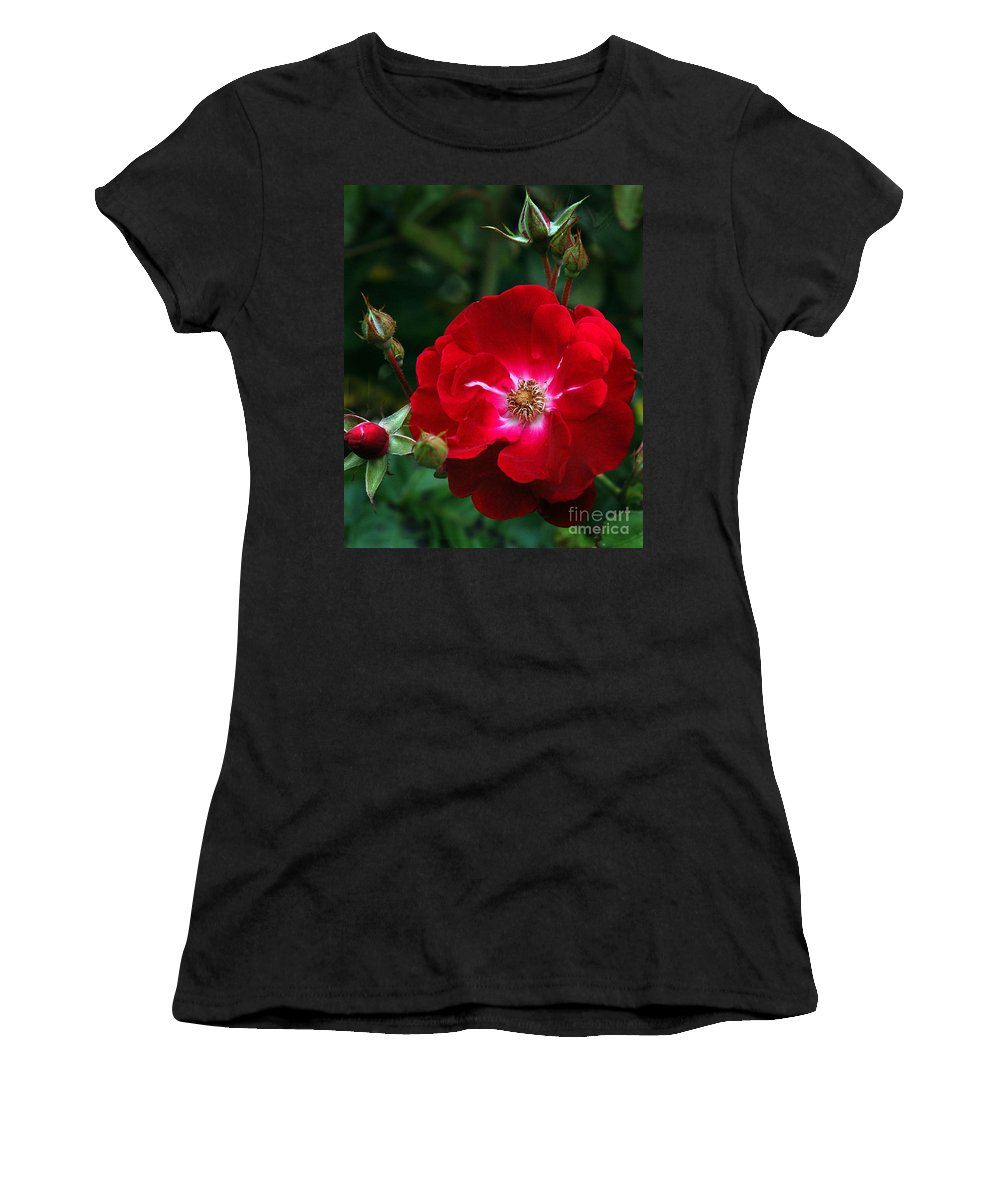 California Scenes Women's T-Shirt (Athletic Fit) featuring the photograph Red Rose With Buds by Norman Andrus