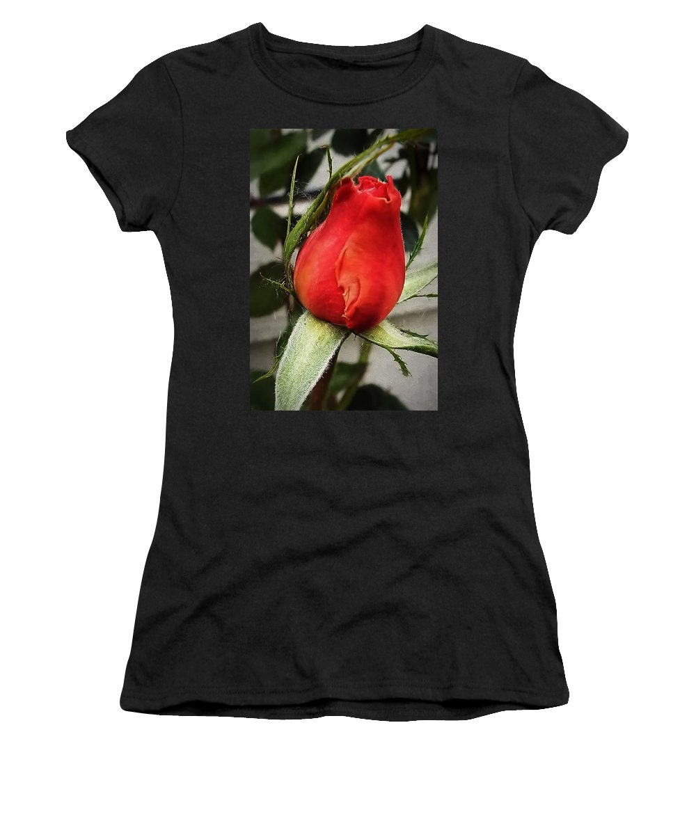 Rosebud Women's T-Shirt featuring the photograph Red Rosebud by Cathy Anderson