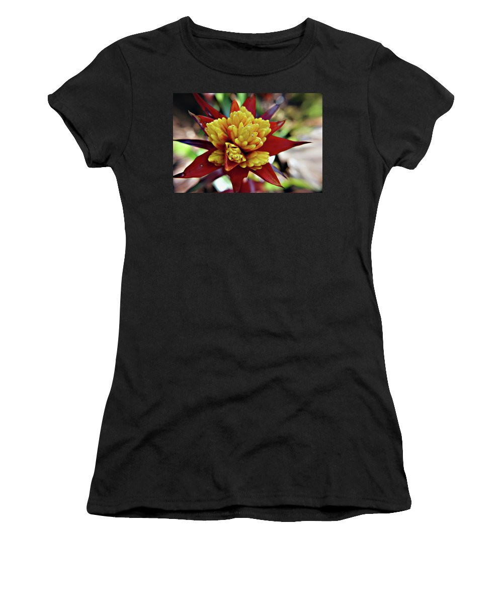 Flowers Women's T-Shirt featuring the photograph Red Spikes 1 by Nancy Aurand-Humpf