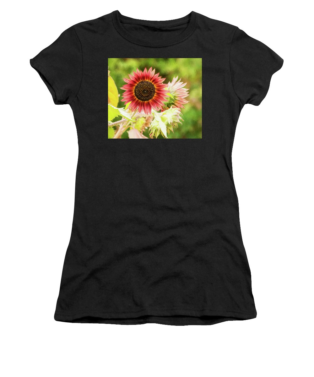 Red Sunflower Women's T-Shirt (Athletic Fit) featuring the photograph Red Sunflower, Provence, France by Curt Rush