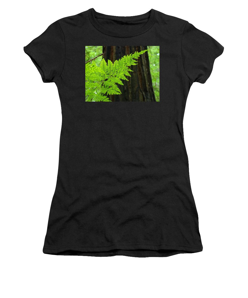 Fern Women's T-Shirt (Athletic Fit) featuring the photograph Redwood Tree Forest Ferns Art Prints Giclee Baslee Troutman by Baslee Troutman
