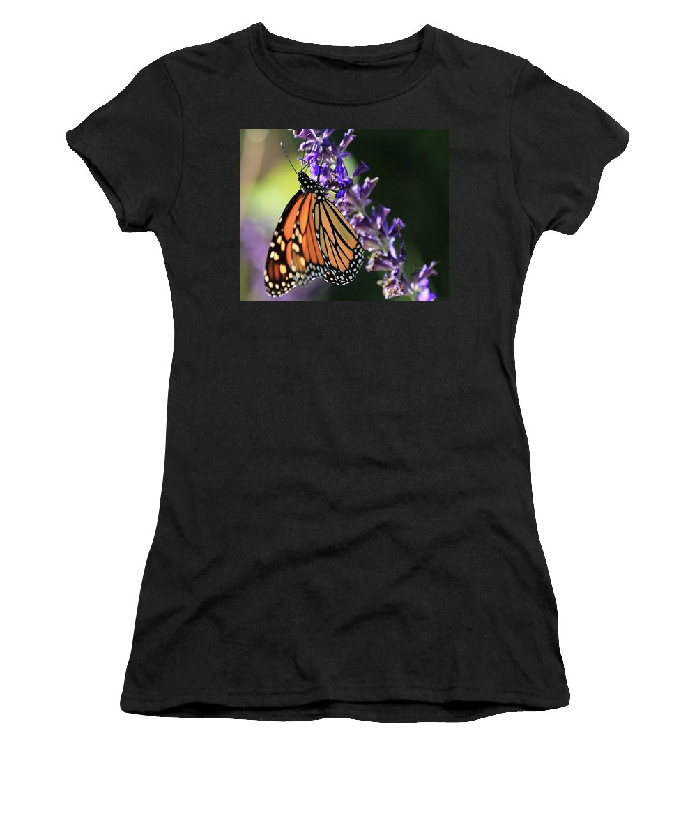 Relaxing Women's T-Shirt featuring the photograph Relaxing Monarch Butterfly by Paul Ranky