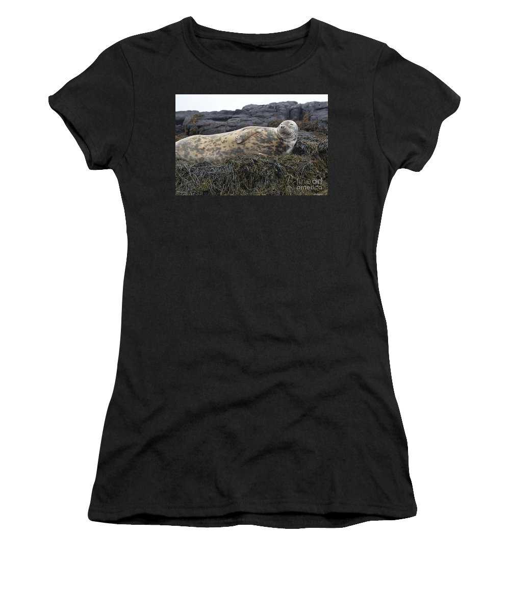 Seal Women's T-Shirt (Athletic Fit) featuring the photograph Resting Gray Seal On Seaweed by DejaVu Designs