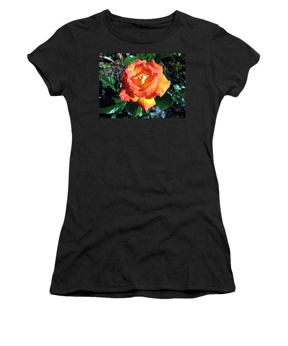 Rose Women's T-Shirt (Athletic Fit) featuring the photograph Roses 1 by Will Borden