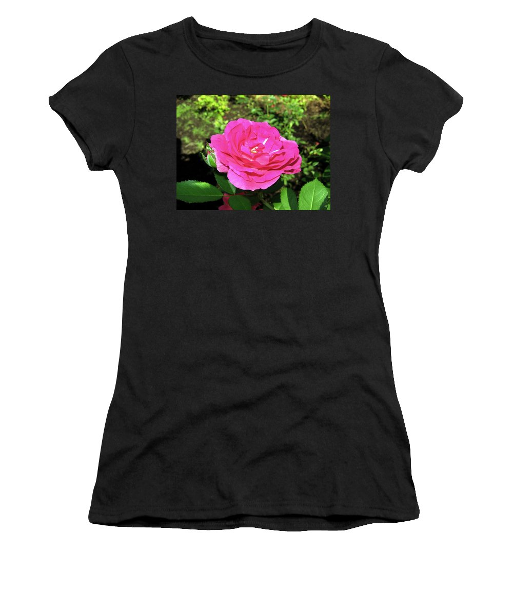Rose Women's T-Shirt (Athletic Fit) featuring the photograph Roses 10 by Will Borden