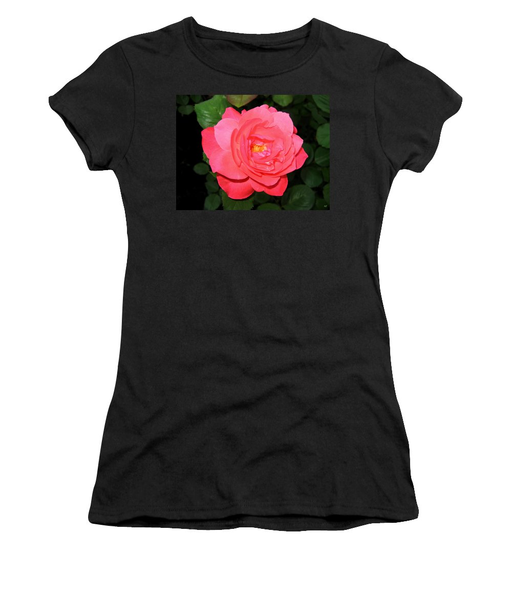 Rose Women's T-Shirt (Athletic Fit) featuring the photograph Roses 12 by Will Borden
