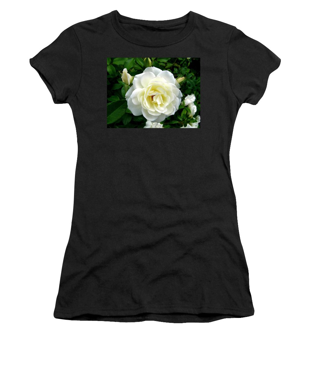 Rose Women's T-Shirt (Athletic Fit) featuring the photograph Roses 2 by Will Borden