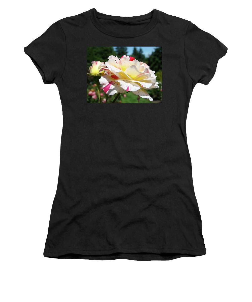 Rose Women's T-Shirt (Athletic Fit) featuring the photograph Roses White Pink Yellow Rose Flowers 3 Rose Garden Art Baslee Troutman by Baslee Troutman