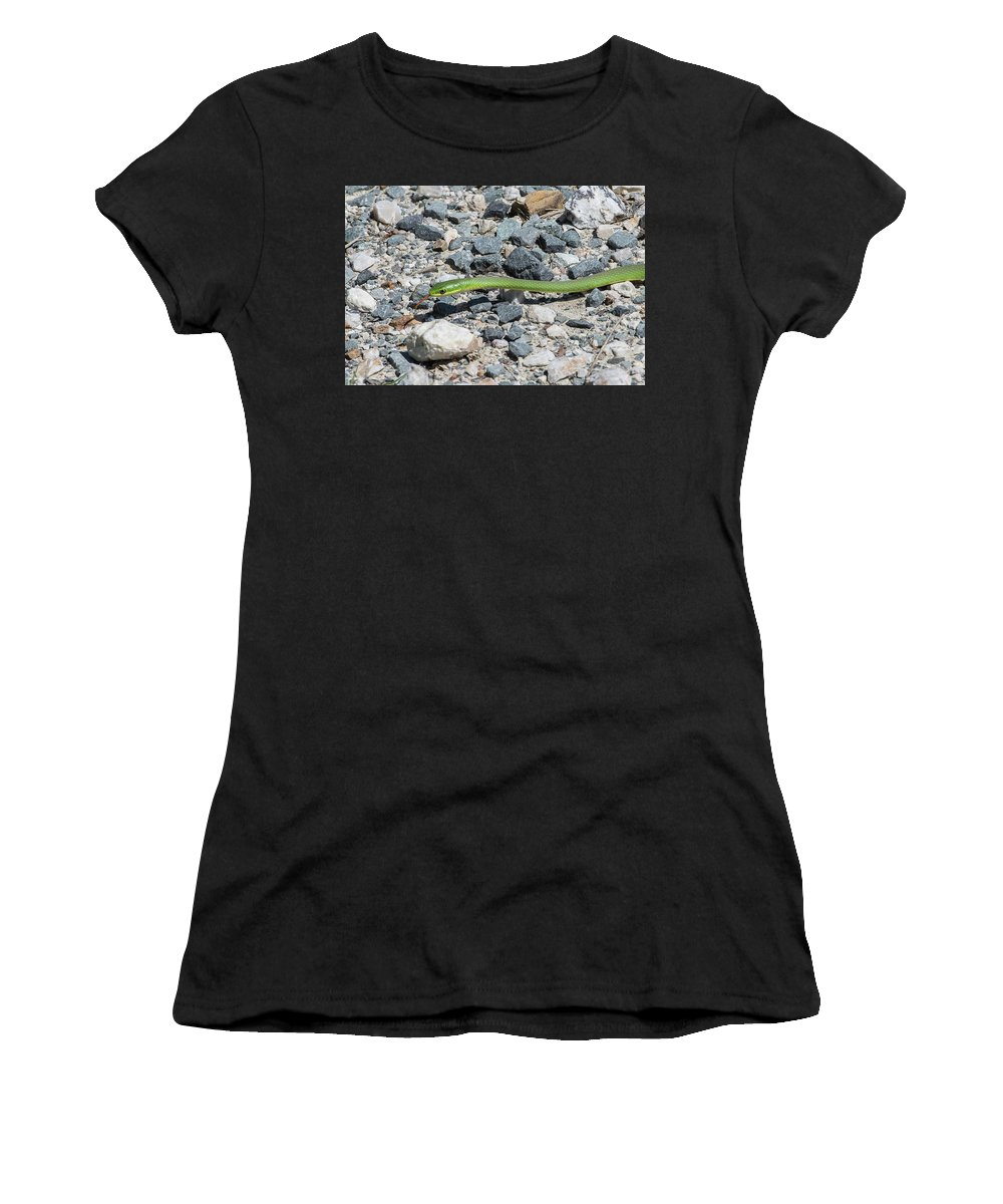 Ronnie Maum Women's T-Shirt (Athletic Fit) featuring the photograph Rough Green Snake by Ronnie Maum
