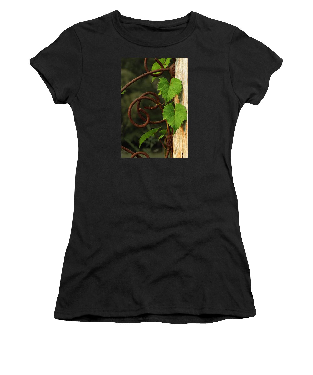Grape Vine Women's T-Shirt (Athletic Fit) featuring the photograph Rust Vine by Grant Groberg
