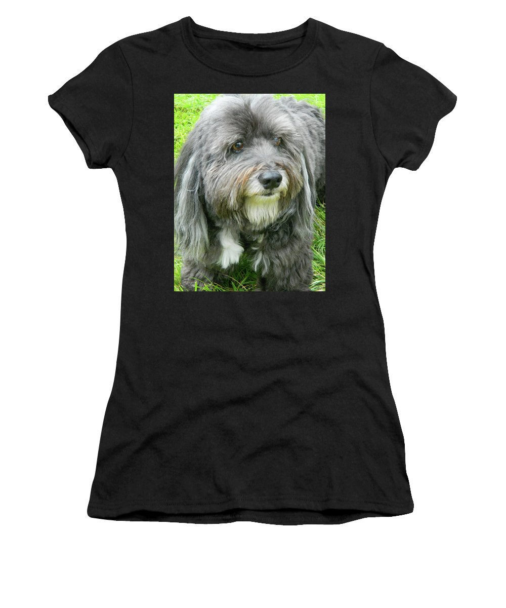 Sam Waiting For Mom I Women's T-Shirt (Athletic Fit) featuring the photograph Sam Waiting For Mom I by Emmy Vickers