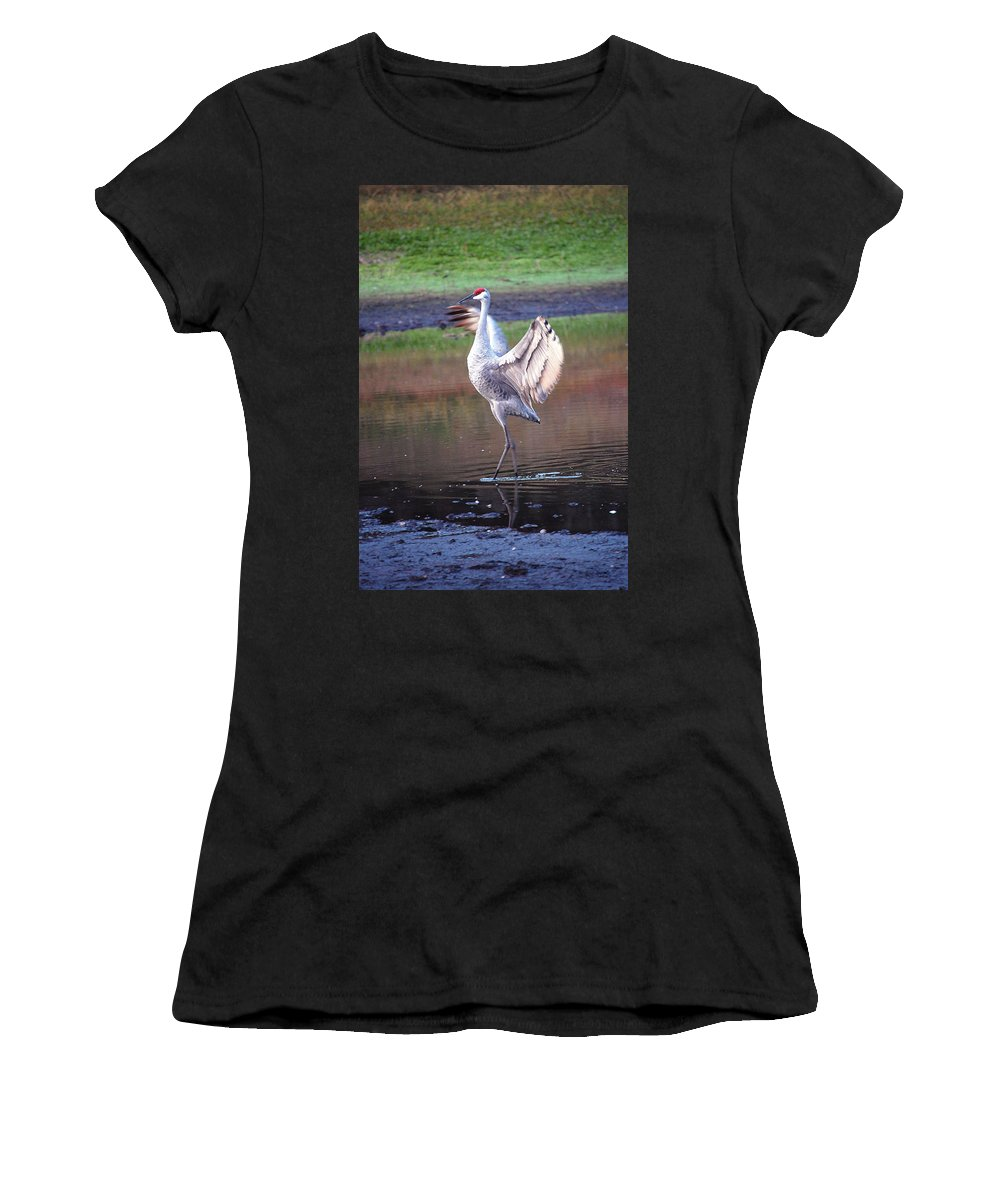 Sandhill Women's T-Shirt (Athletic Fit) featuring the digital art Sandhill Crane Painted by Robert Meanor