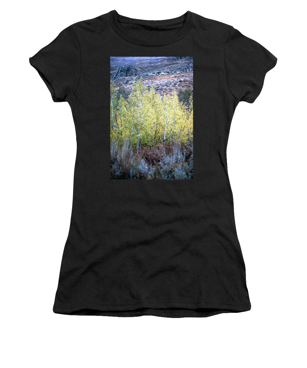 Landscapes Women's T-Shirt (Athletic Fit) featuring the photograph Sawtooth National Forest 2 by John Schneider