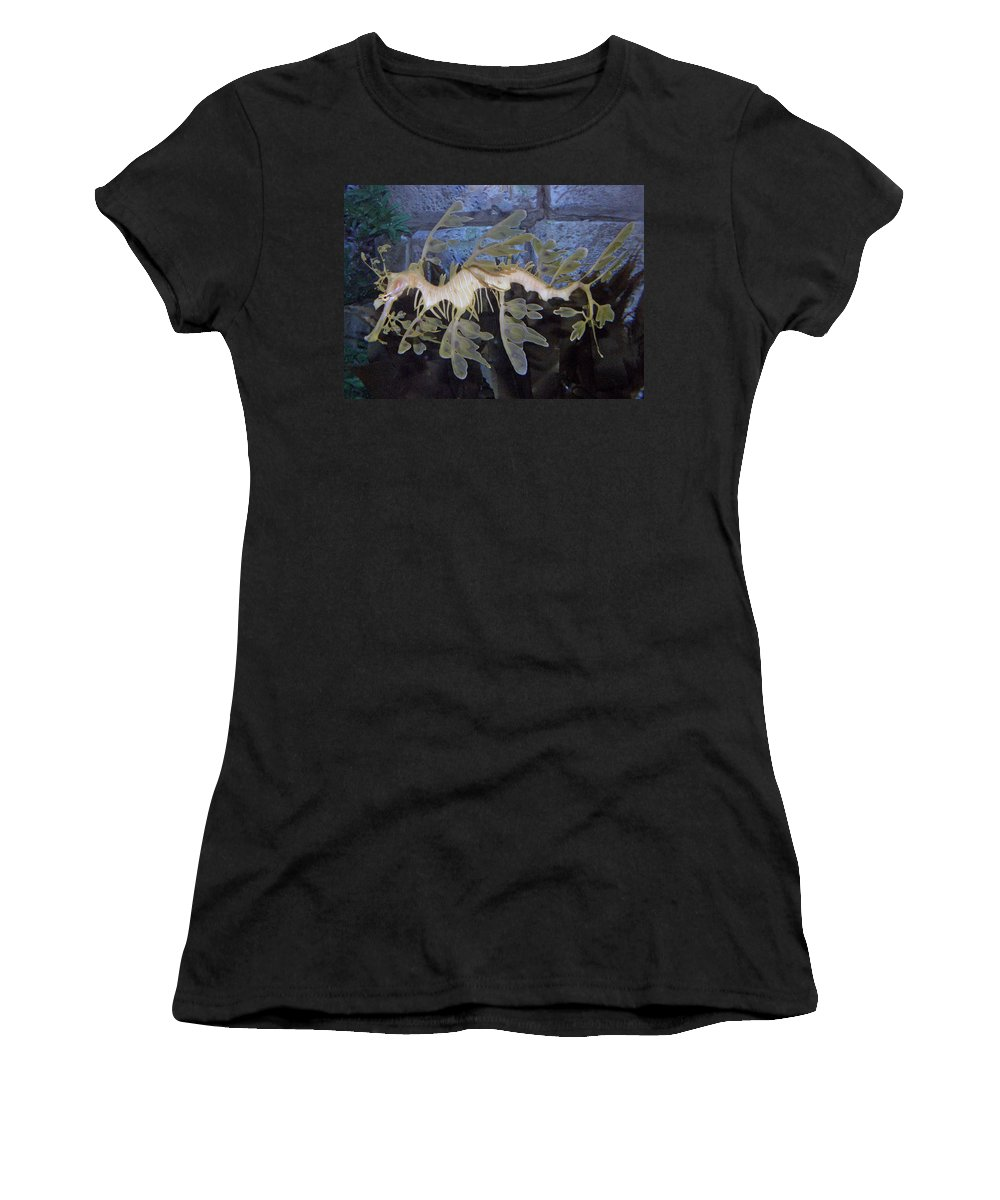 Sea Dragon Women's T-Shirt featuring the photograph Sea Dragon by Kimberly Mohlenhoff