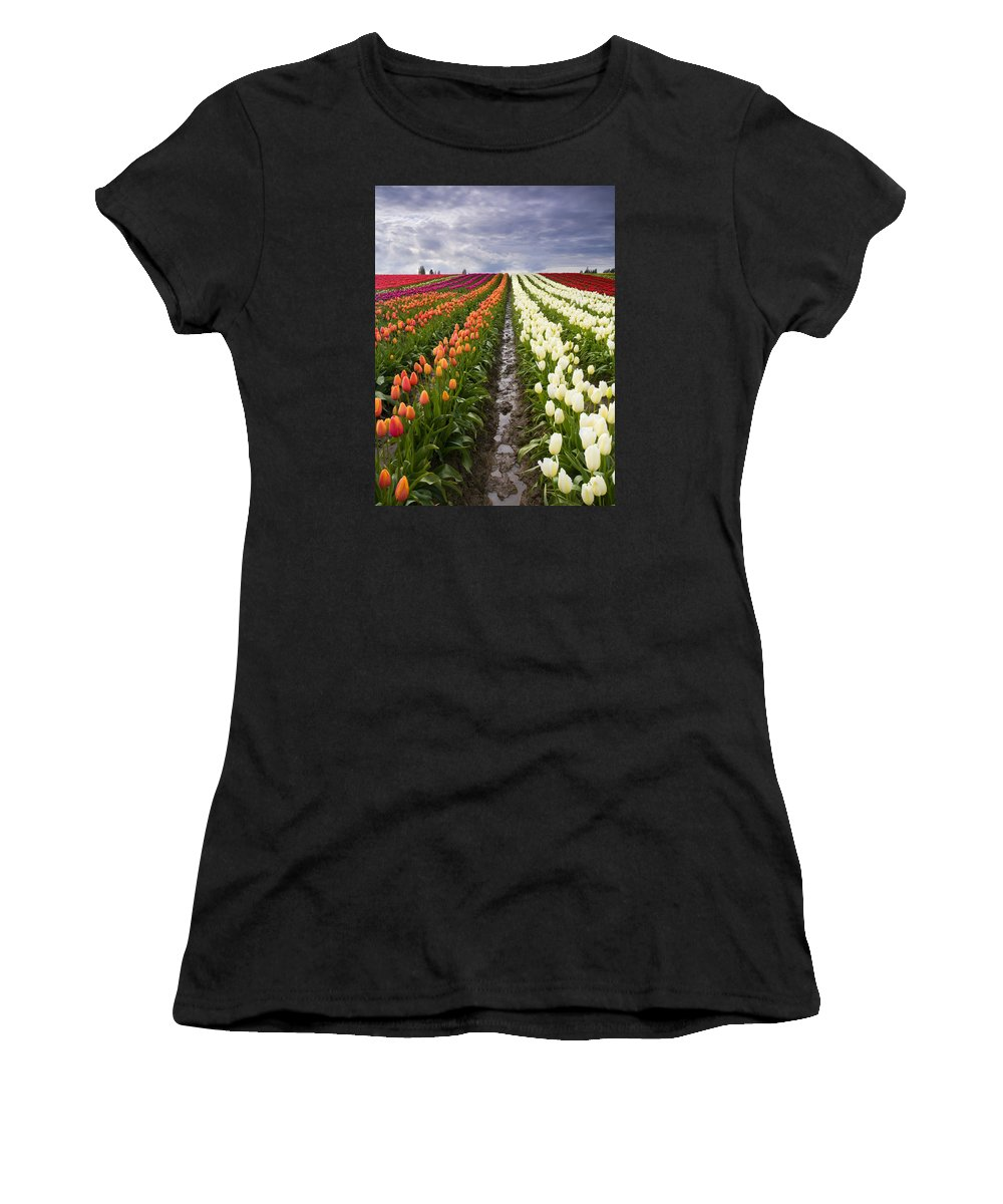 Tulips Women's T-Shirt (Athletic Fit) featuring the photograph Sea Of Color by Mike Dawson
