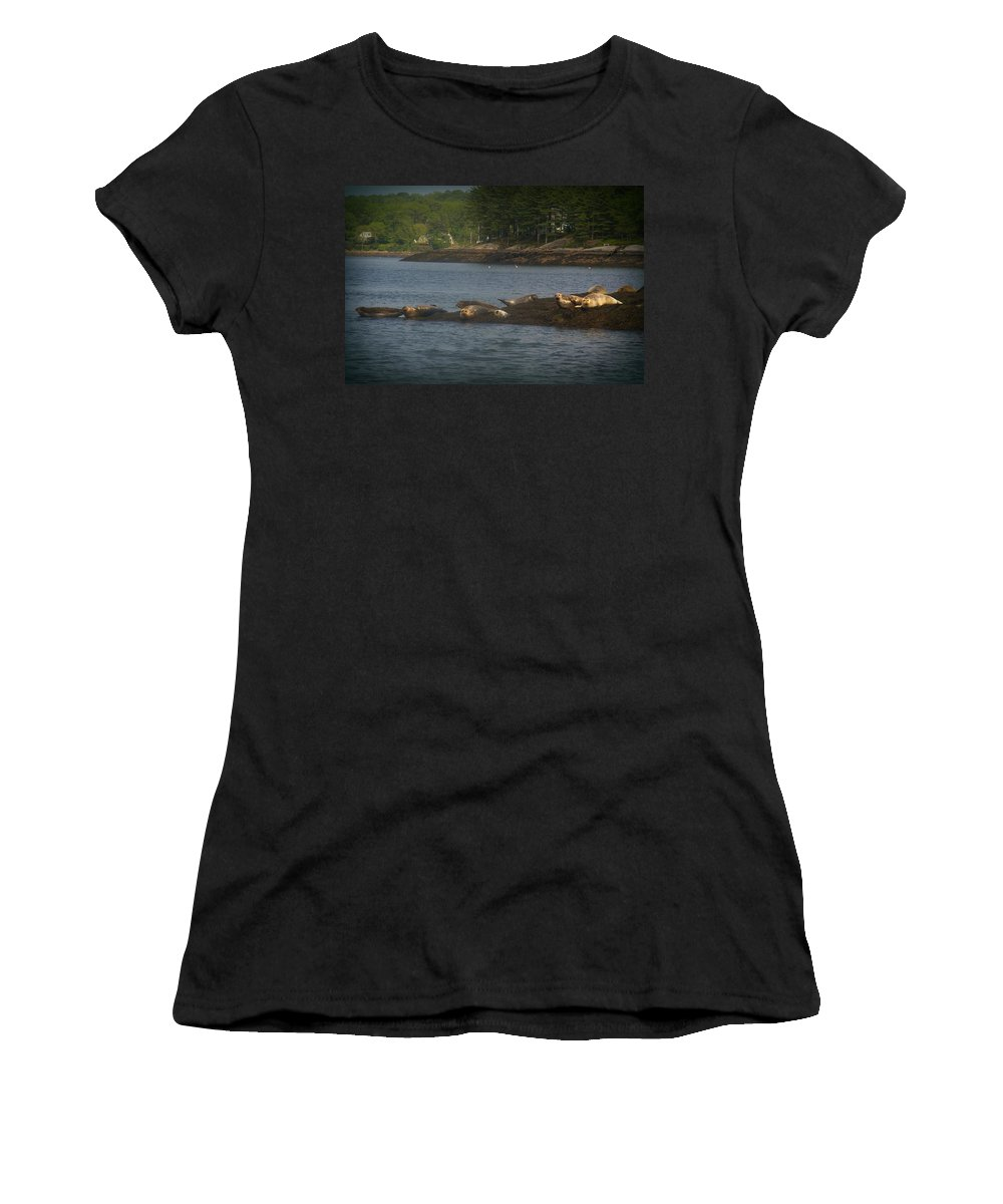 Seals Women's T-Shirt (Athletic Fit) featuring the photograph Seal Series 7 by Amy-Elizabeth Toomey