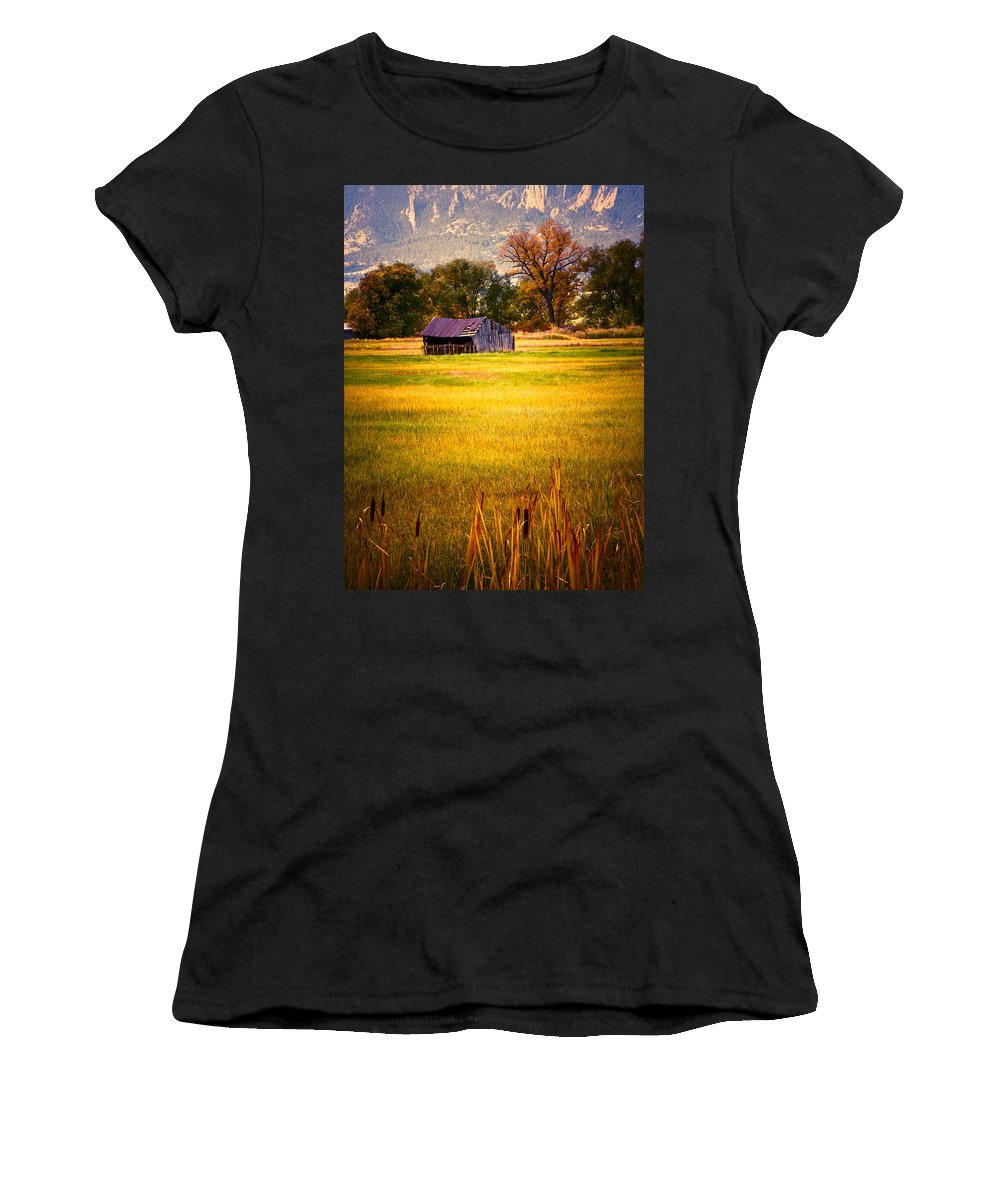 Shed Women's T-Shirt (Athletic Fit) featuring the photograph Shed In Sunlight by Marilyn Hunt
