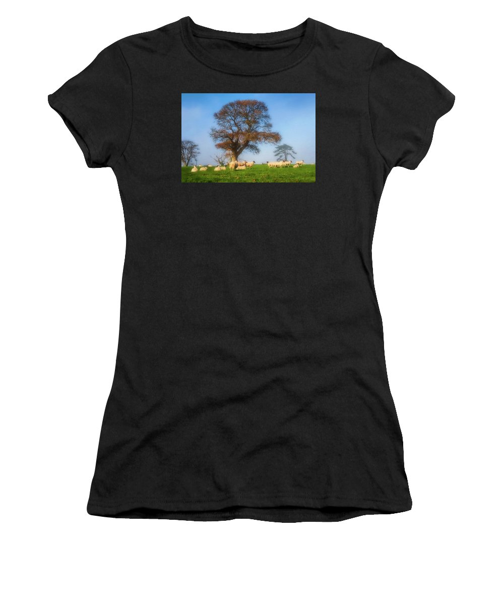 Sheep Women's T-Shirt (Athletic Fit) featuring the photograph Sheep In Somerset - Impressions by Susie Peek