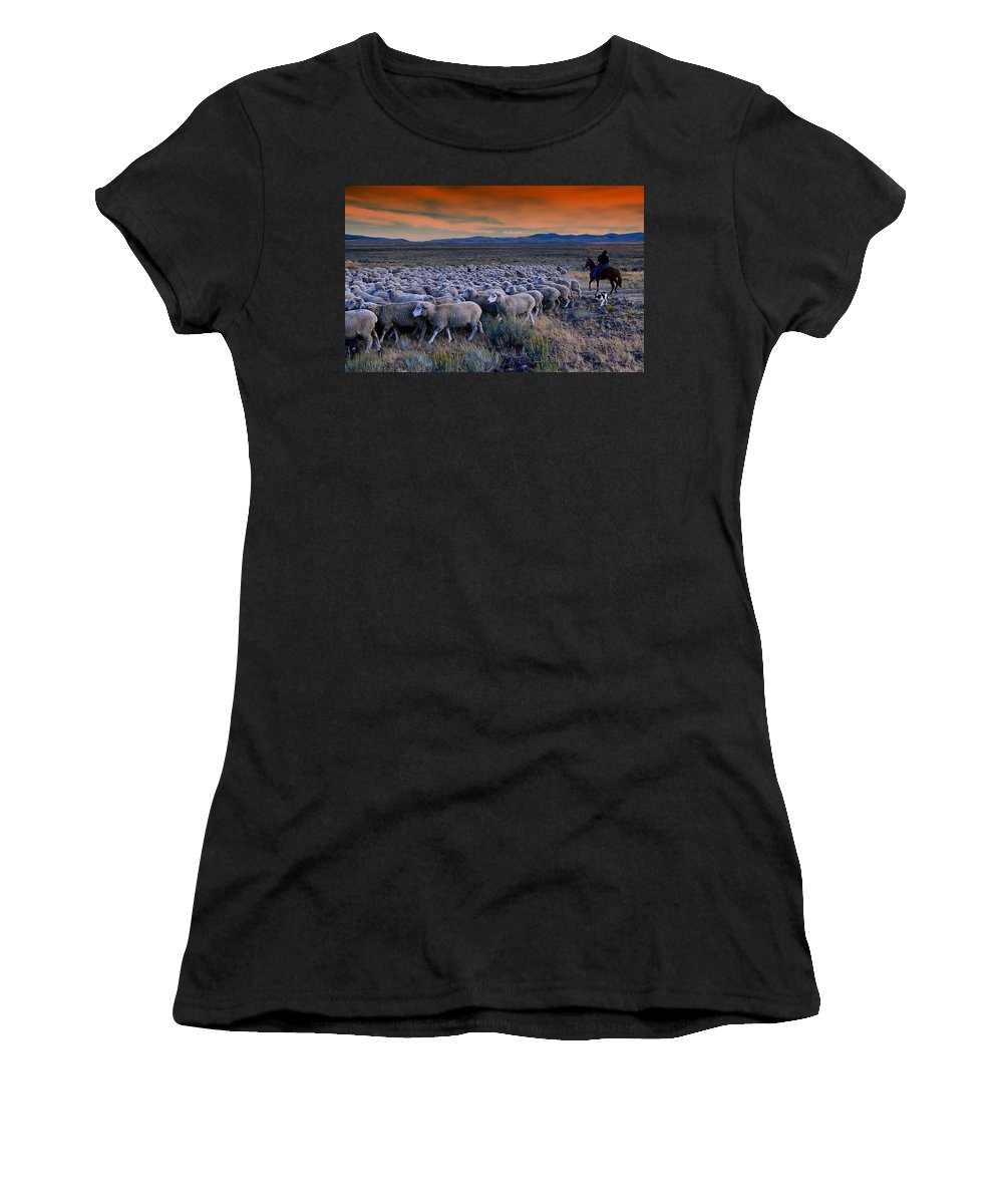 Sheepherder Women's T-Shirt (Athletic Fit) featuring the photograph Sheepherder Life by Movie Poster Prints