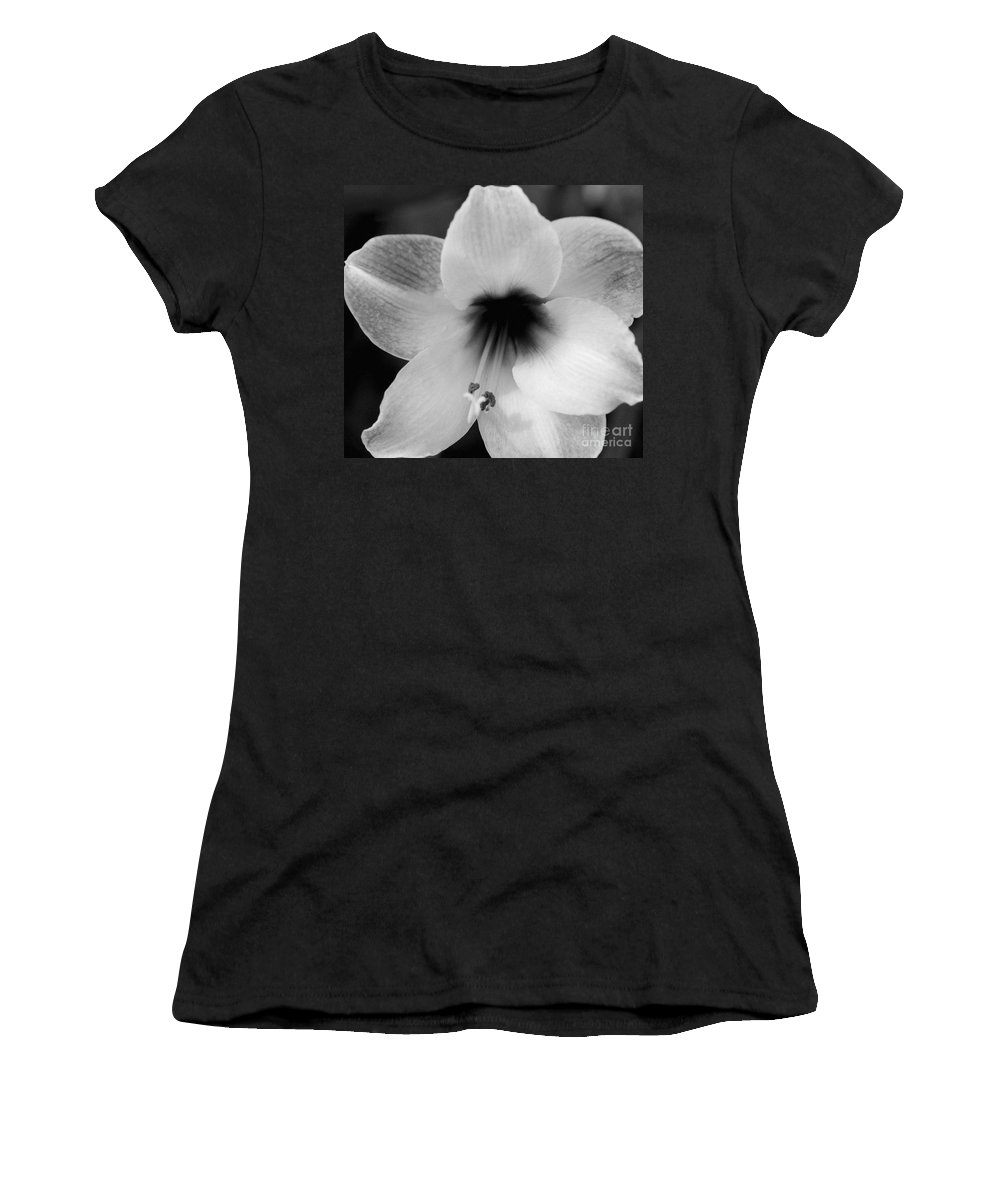 #amaryllis Women's T-Shirt (Athletic Fit) featuring the photograph Sheer Amaryllis by Kathleen Struckle