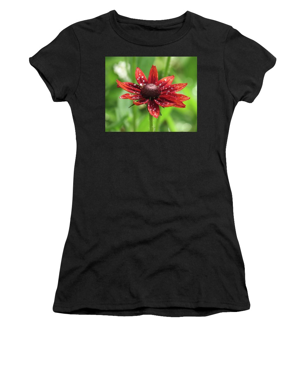 Daisy Women's T-Shirt (Athletic Fit) featuring the photograph Shower Flower by Marsha Ewing