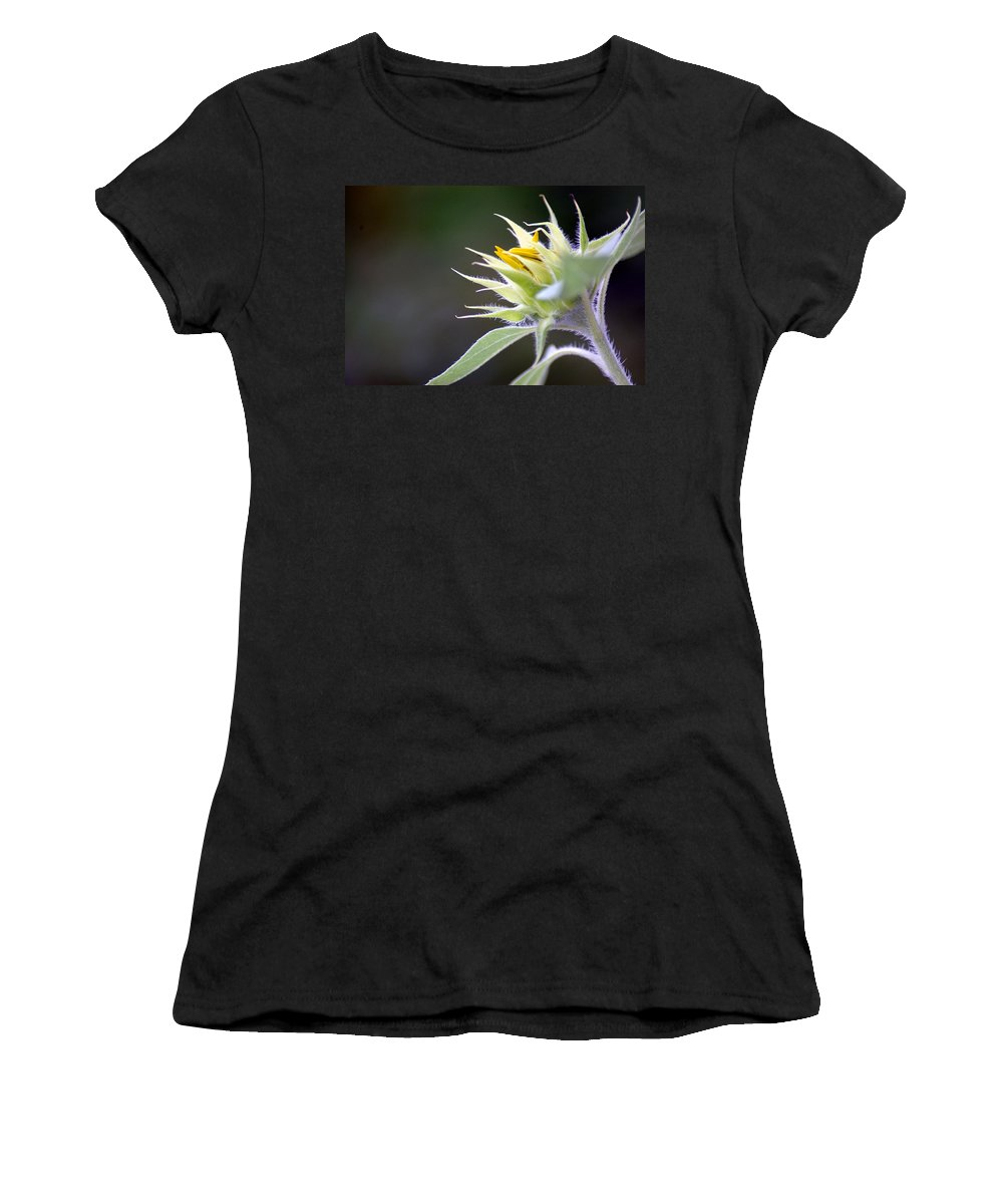 Sunflower Women's T-Shirt (Athletic Fit) featuring the photograph Someday Soon by Donna Bentley
