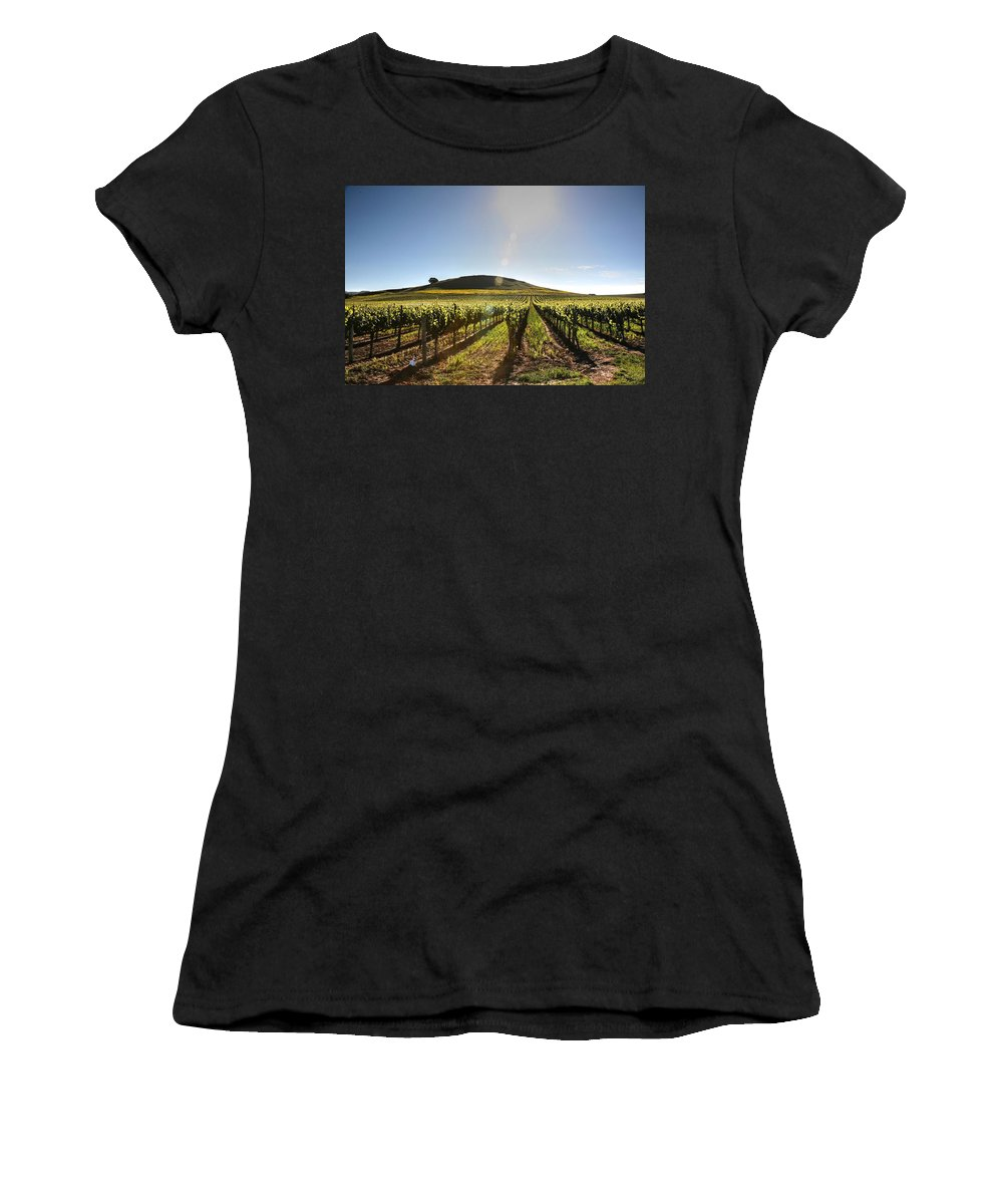 Users Women's T-Shirt featuring the photograph South Napa Valley Morning by Ray Marcus