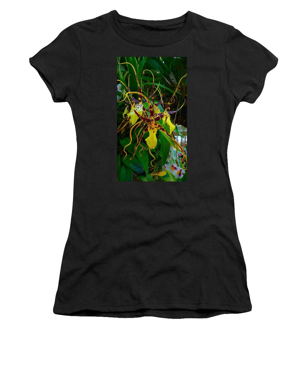 Chicago Botanic Garden Women's T-Shirt (Athletic Fit) featuring the photograph Spindly Orchid by Tim G Ross