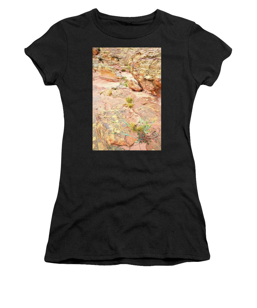 Valley Of Fire State Park Women's T-Shirt featuring the photograph Splash Of Color In Valley Of Fire's Wash 3 by Ray Mathis