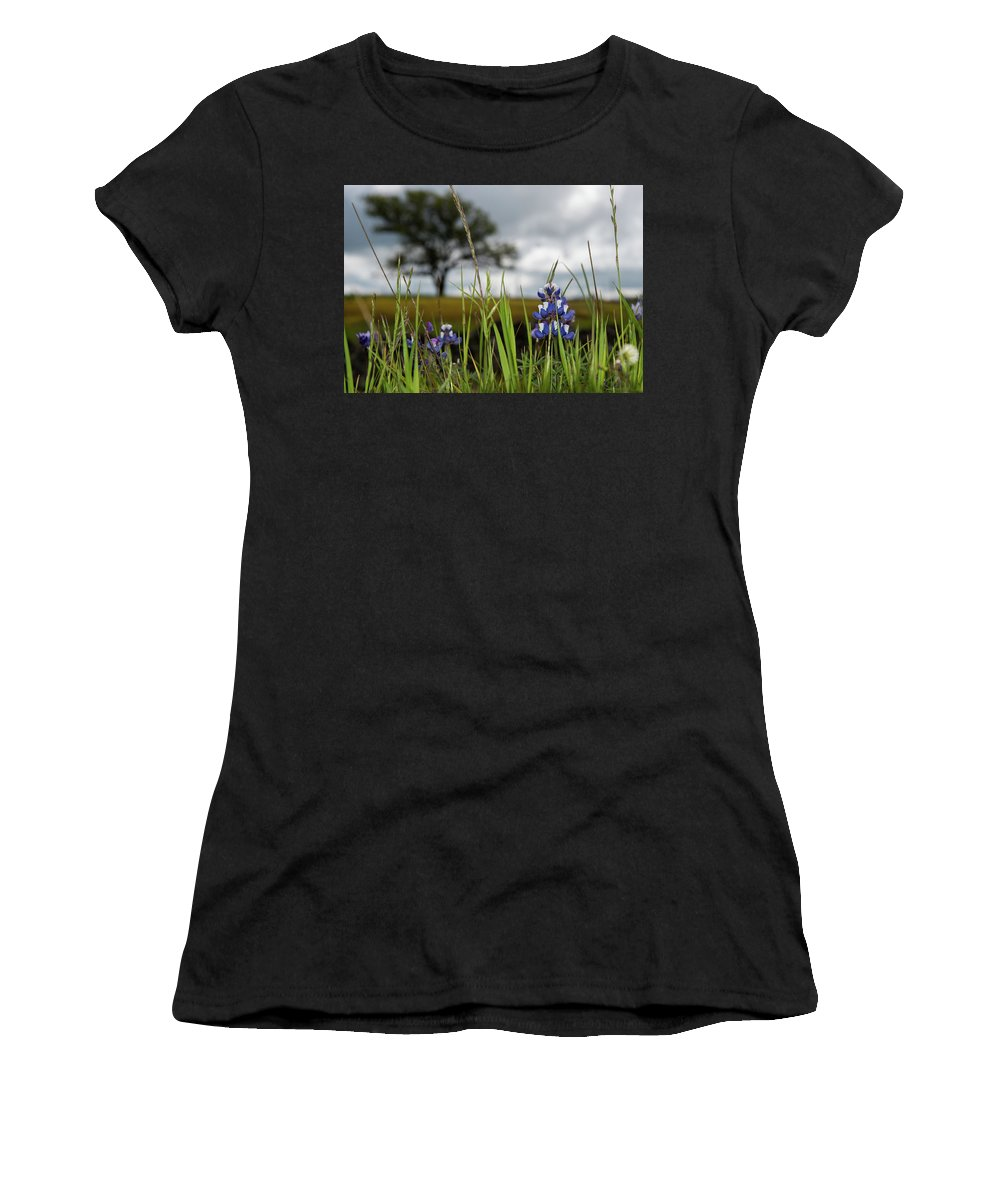 Table Mountain Women's T-Shirt (Athletic Fit) featuring the photograph Spring Blooms by Barbara Matthews