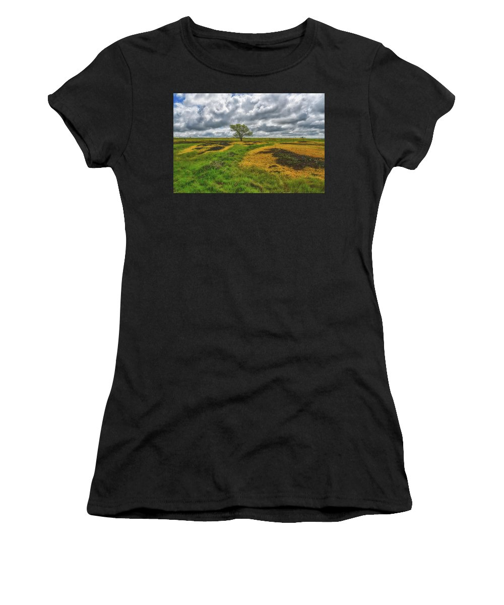 Table Mountain Women's T-Shirt (Athletic Fit) featuring the photograph Spring Drama by Barbara Matthews