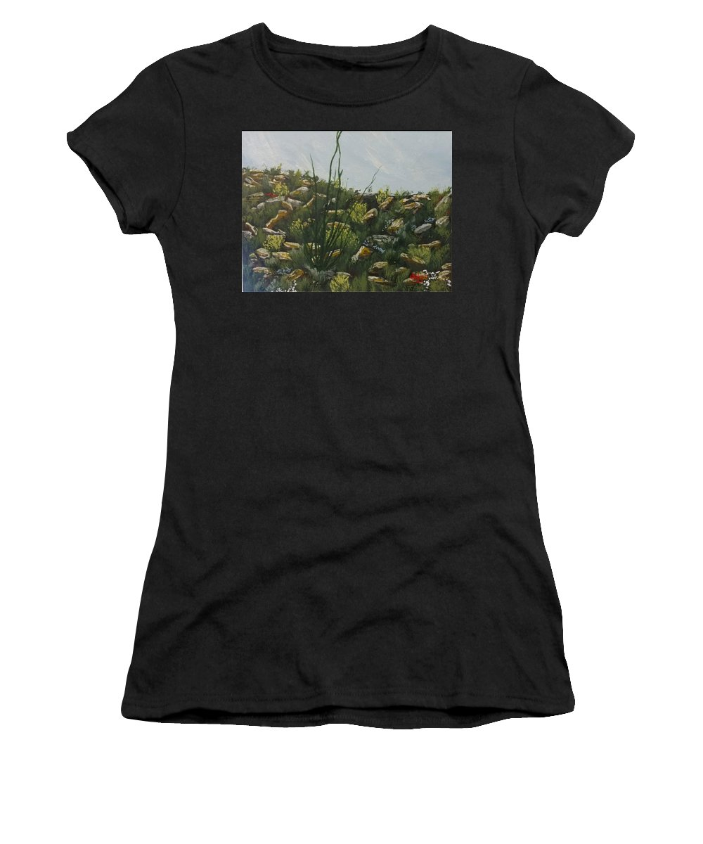 Desert Landscape Women's T-Shirt (Athletic Fit) featuring the painting Spring In Borrego by David Stanley