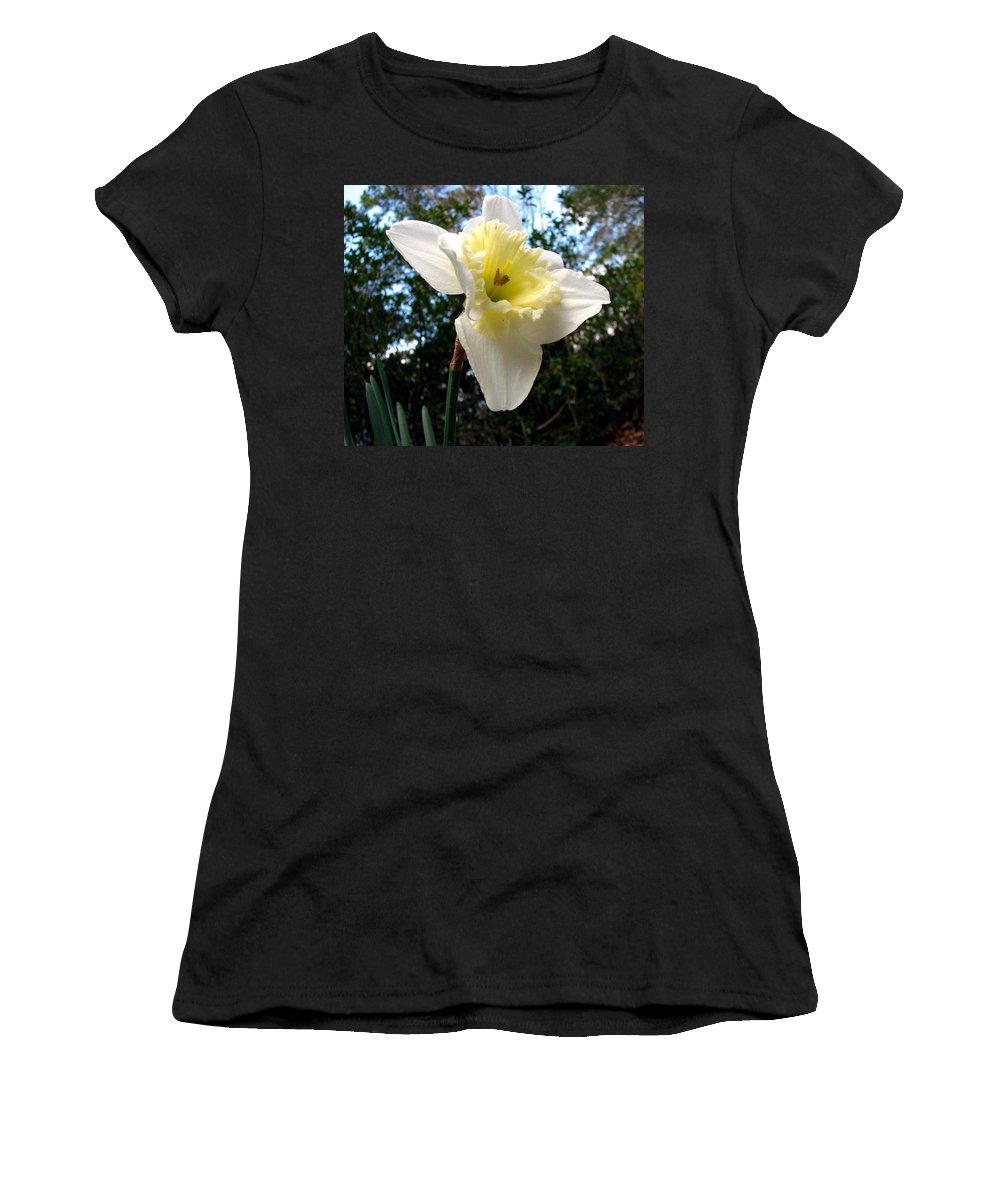 Daffodil Women's T-Shirt (Athletic Fit) featuring the photograph Spring's First Daffodil 3 by J M Farris Photography