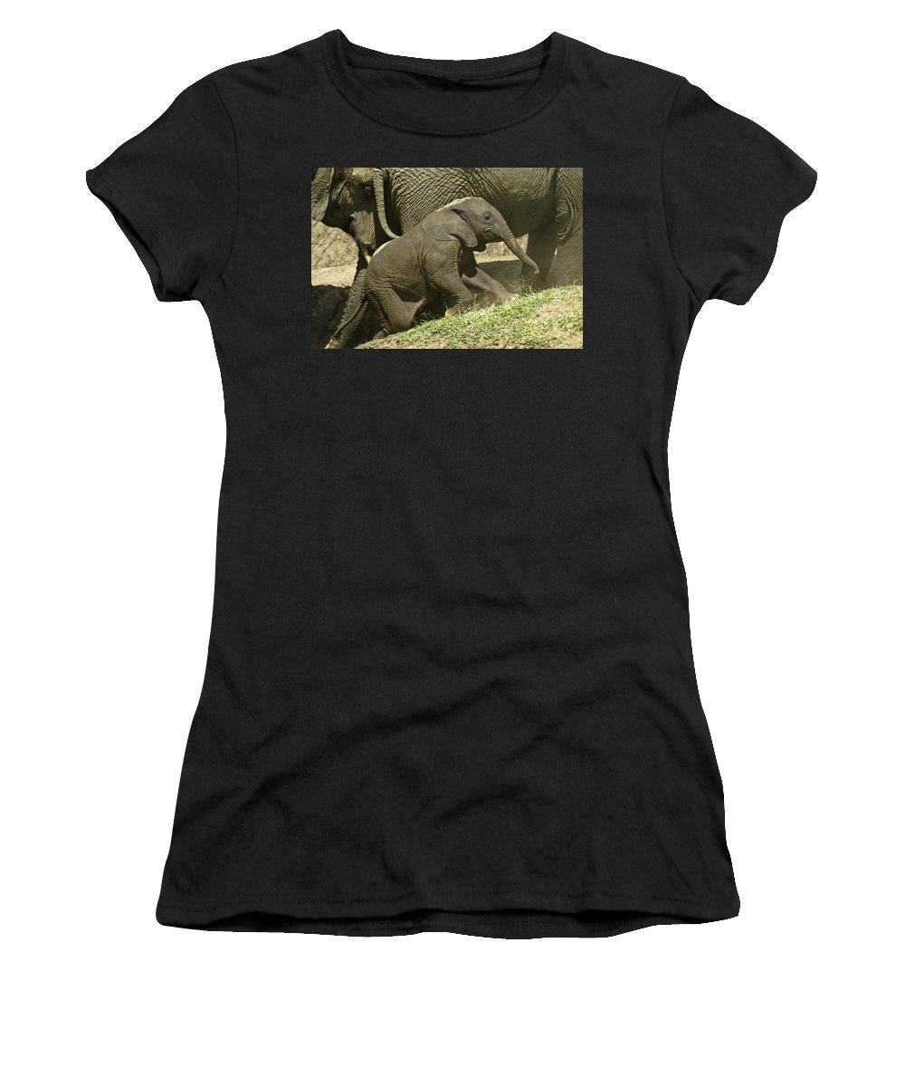 Africa Women's T-Shirt (Athletic Fit) featuring the photograph Steep Climb For A Little Guy by Michele Burgess
