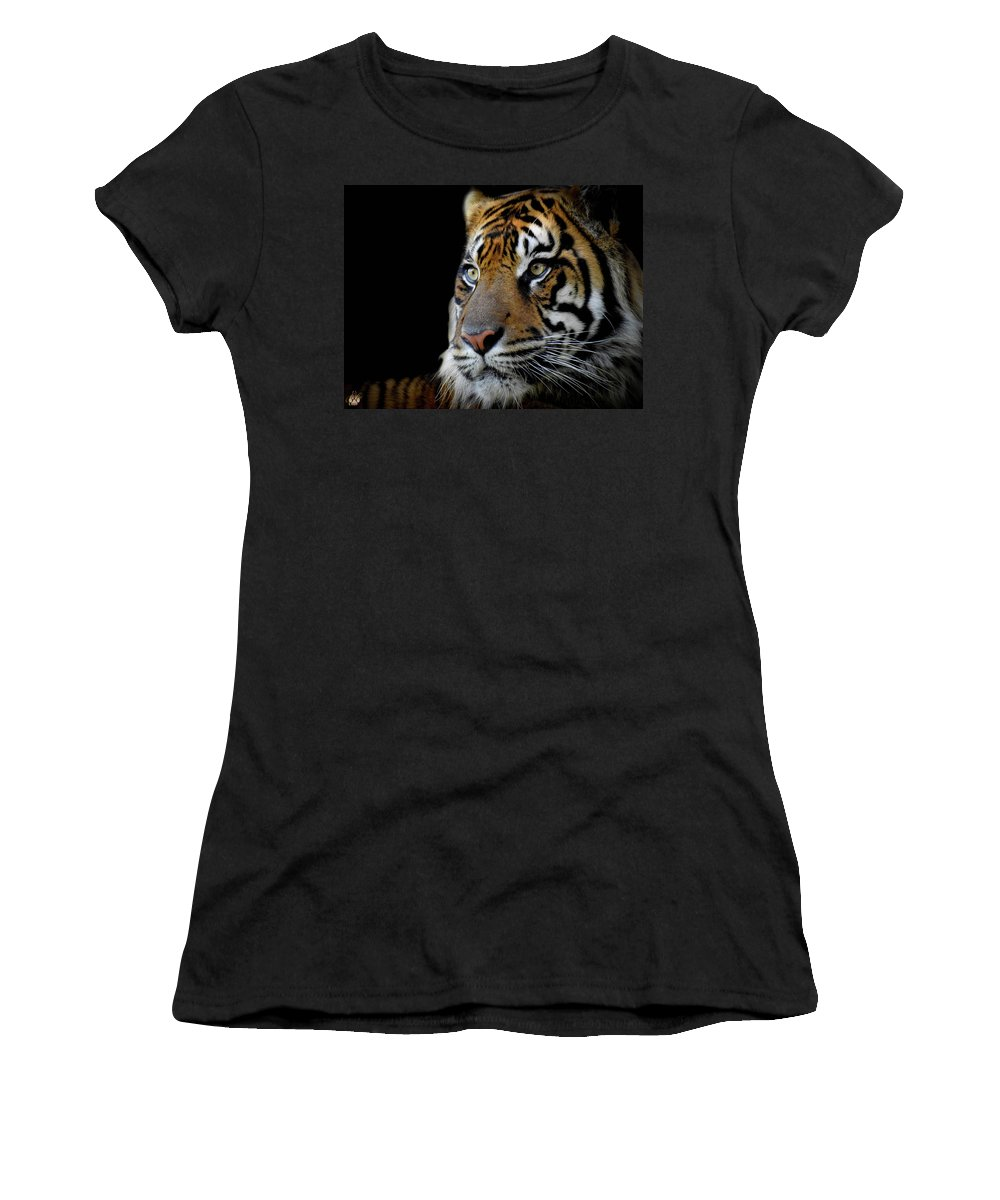 Tiger Women's T-Shirt (Athletic Fit) featuring the photograph Stripes, No. 11 by Elie Wolf