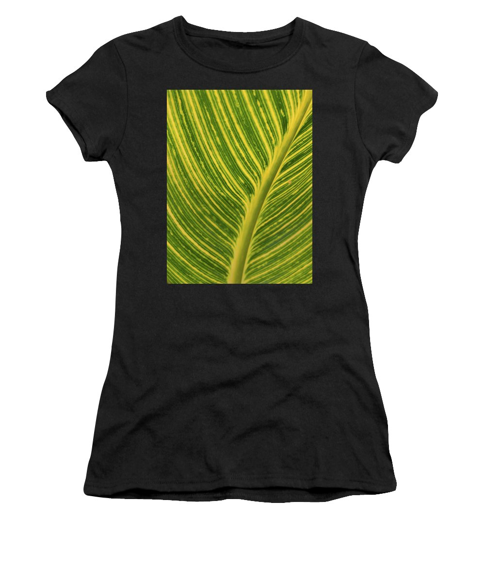 Green Women's T-Shirt featuring the photograph Stripey Leaf by Josie Gilbert