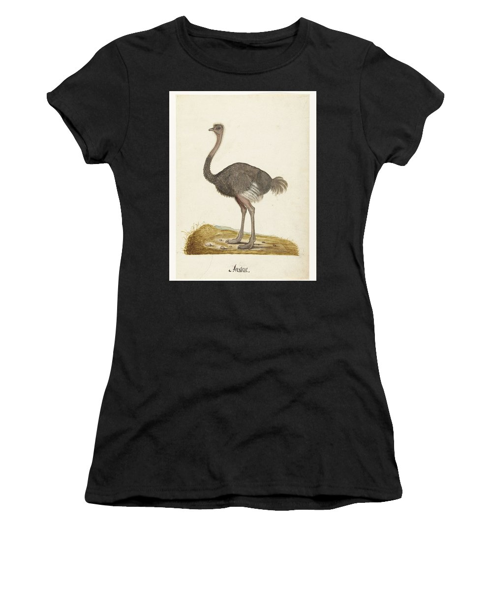 Bird Women's T-Shirt (Athletic Fit) featuring the painting Struisvogel, Anonymous, 1560 - 1585 by Artistic Rifki