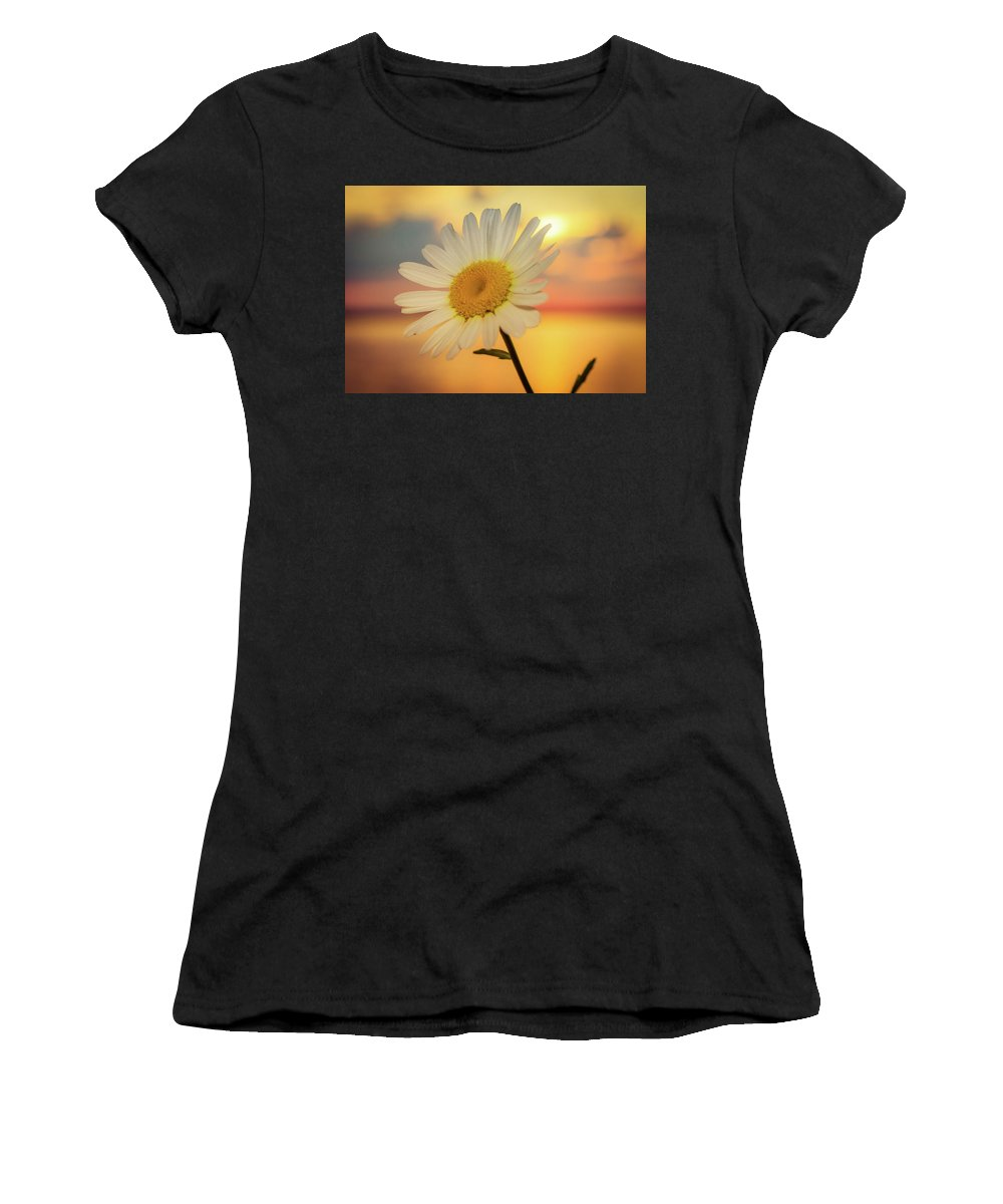 Flower Women's T-Shirt (Athletic Fit) featuring the photograph Summer Daisy by Lisa Roskey Photography