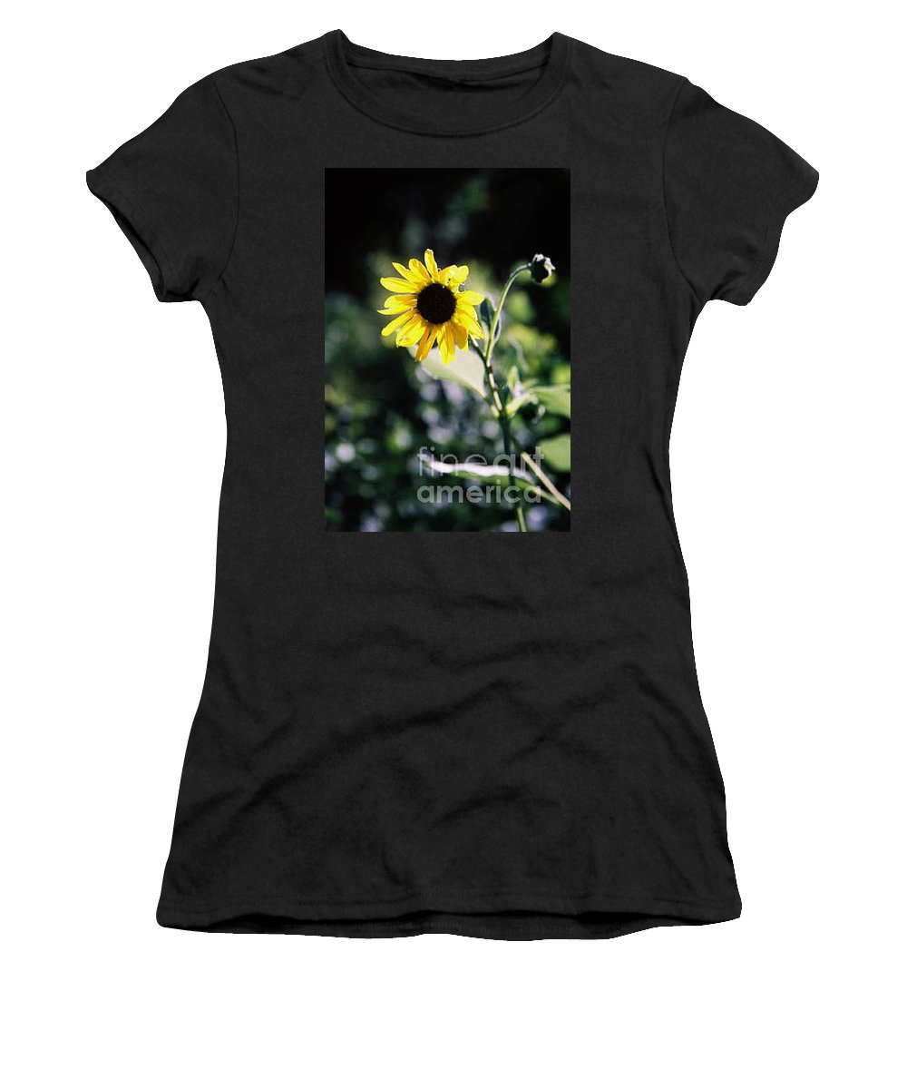 Sunflower Women's T-Shirt (Athletic Fit) featuring the photograph Summer Sunshine by Kathy McClure