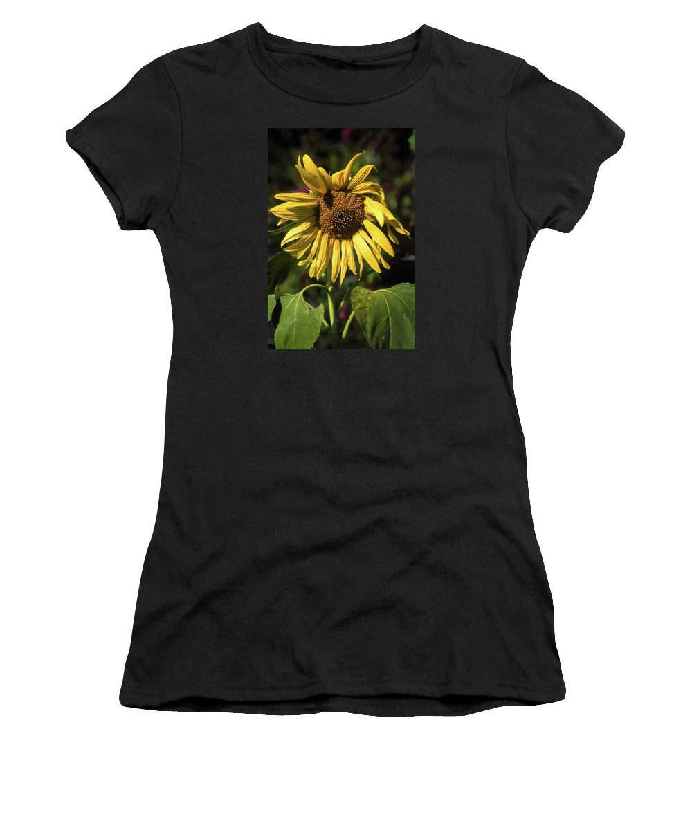 Sunflower Women's T-Shirt featuring the photograph Sunflower Close Up by Sally Weigand