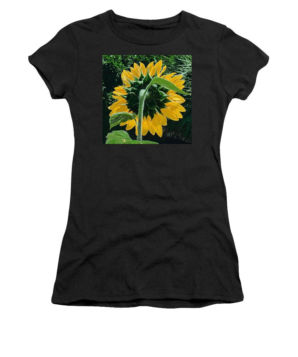 Sunflower Women's T-Shirt featuring the photograph Sunflower Rear by Stan Magnan