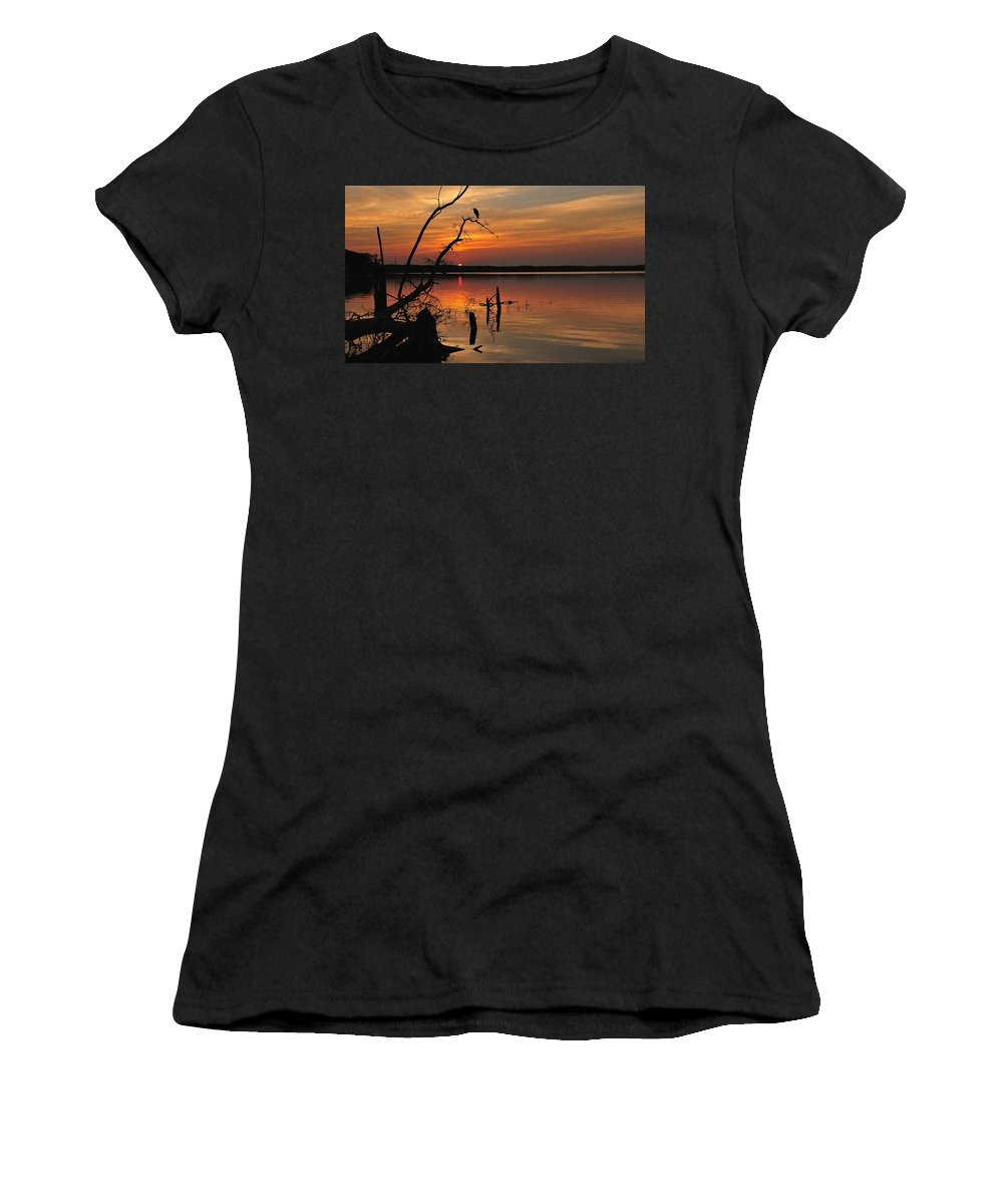 Sunset Women's T-Shirt featuring the photograph Sunset And Heron by Angel Cher
