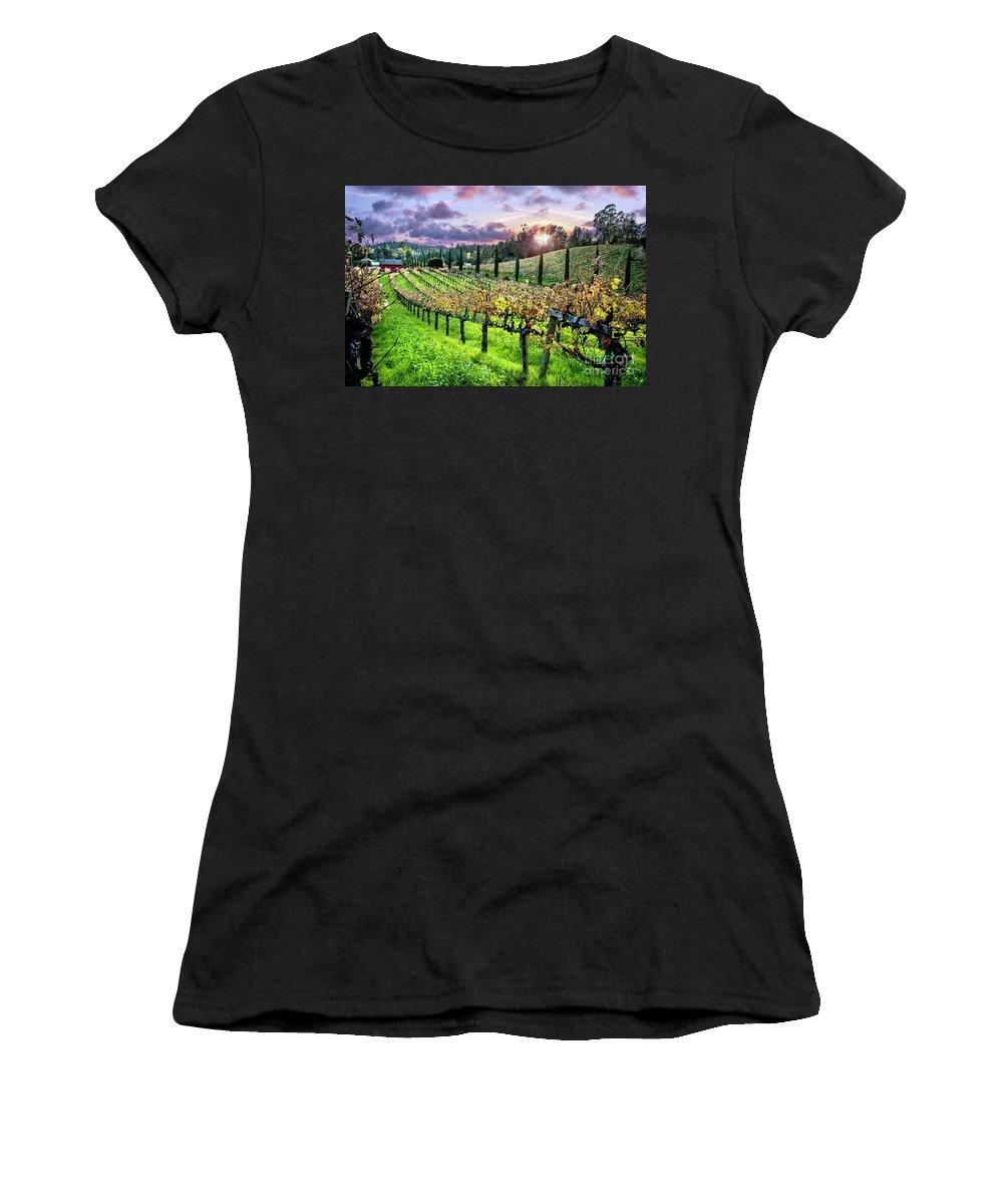 Sonoma Women's T-Shirts