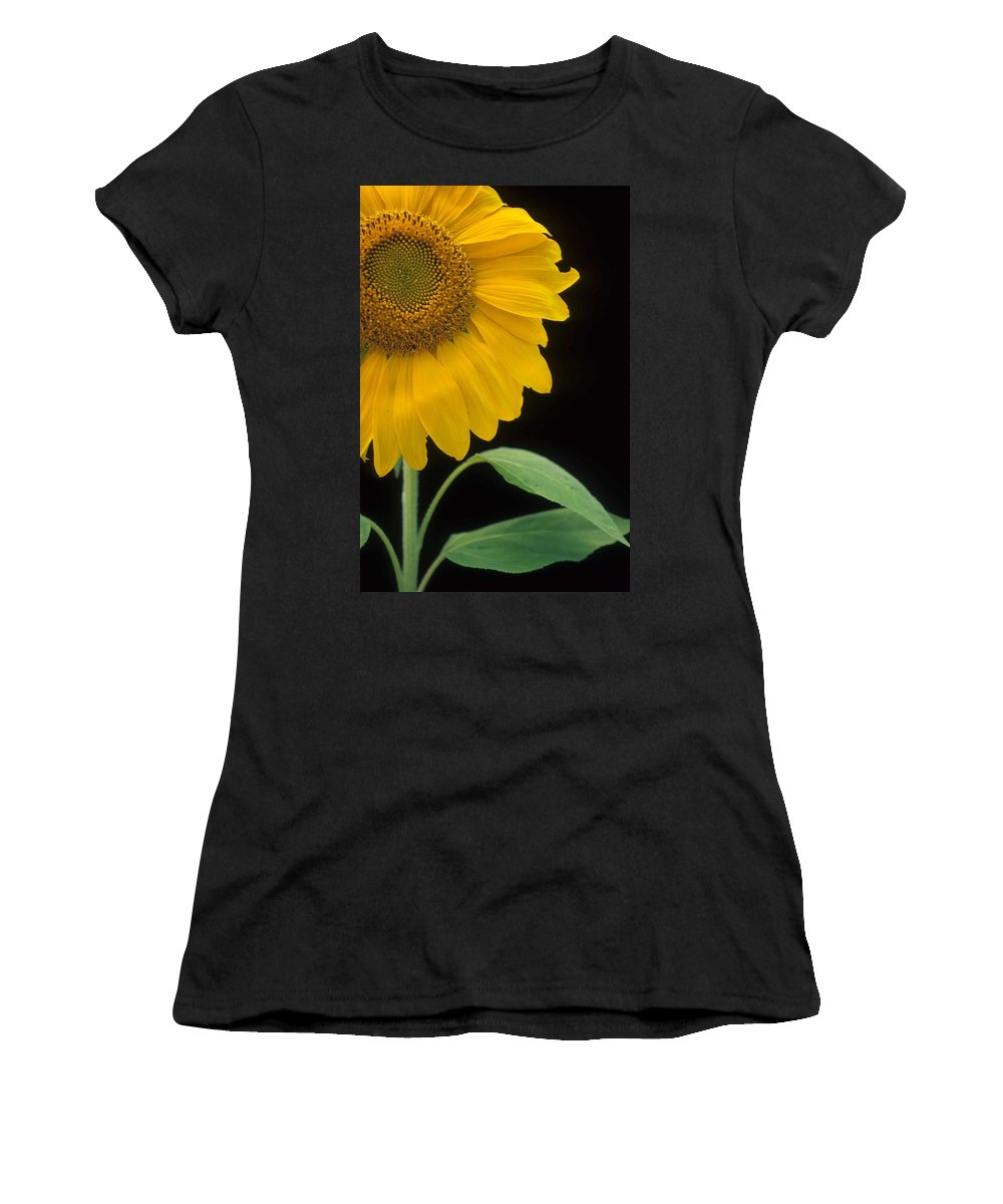 Sunflower Women's T-Shirt (Athletic Fit) featuring the photograph Sussex County Gem by Laurie Paci
