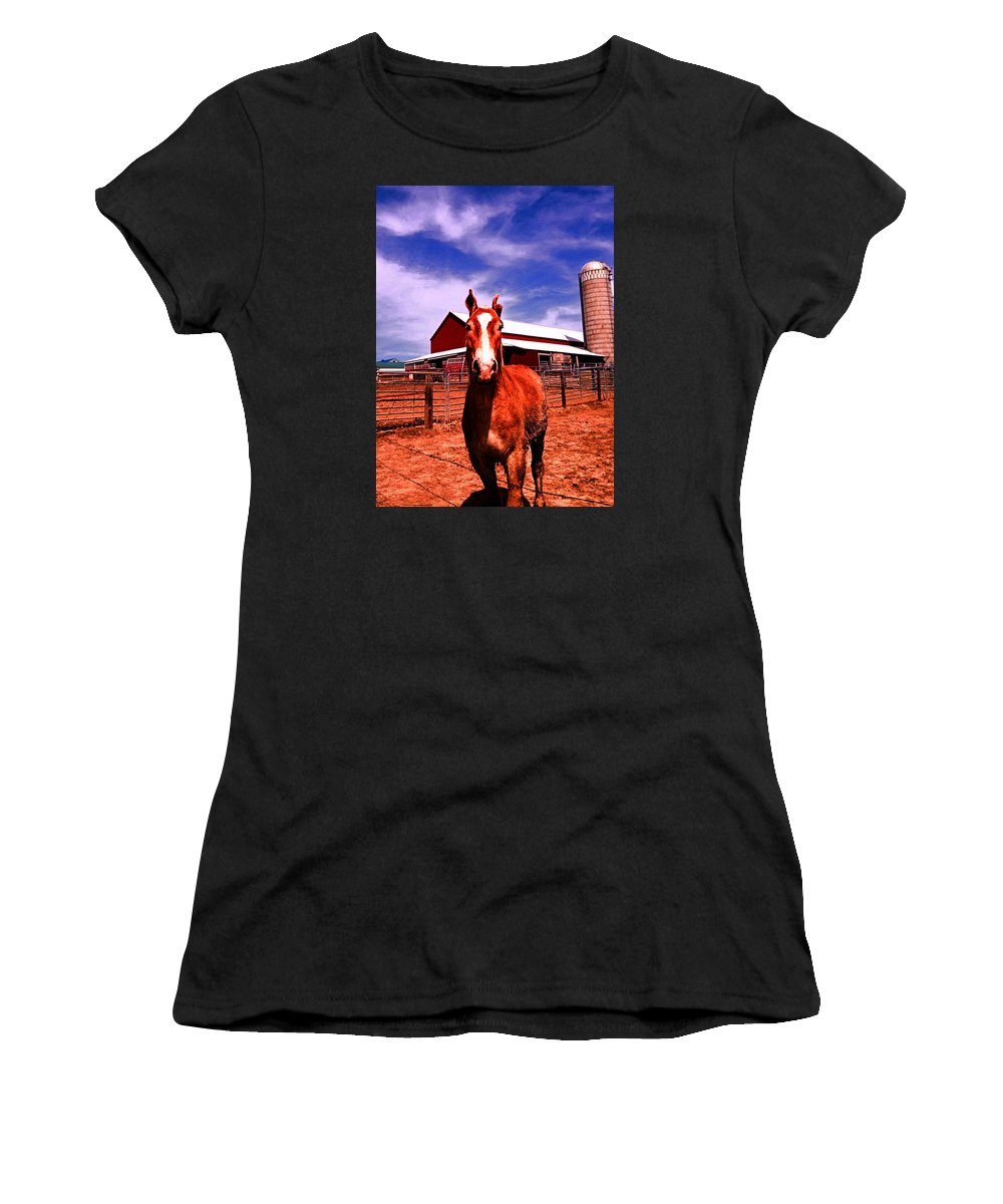 Amish Women's T-Shirt (Athletic Fit) featuring the photograph Sweetness by Lori Faircloth