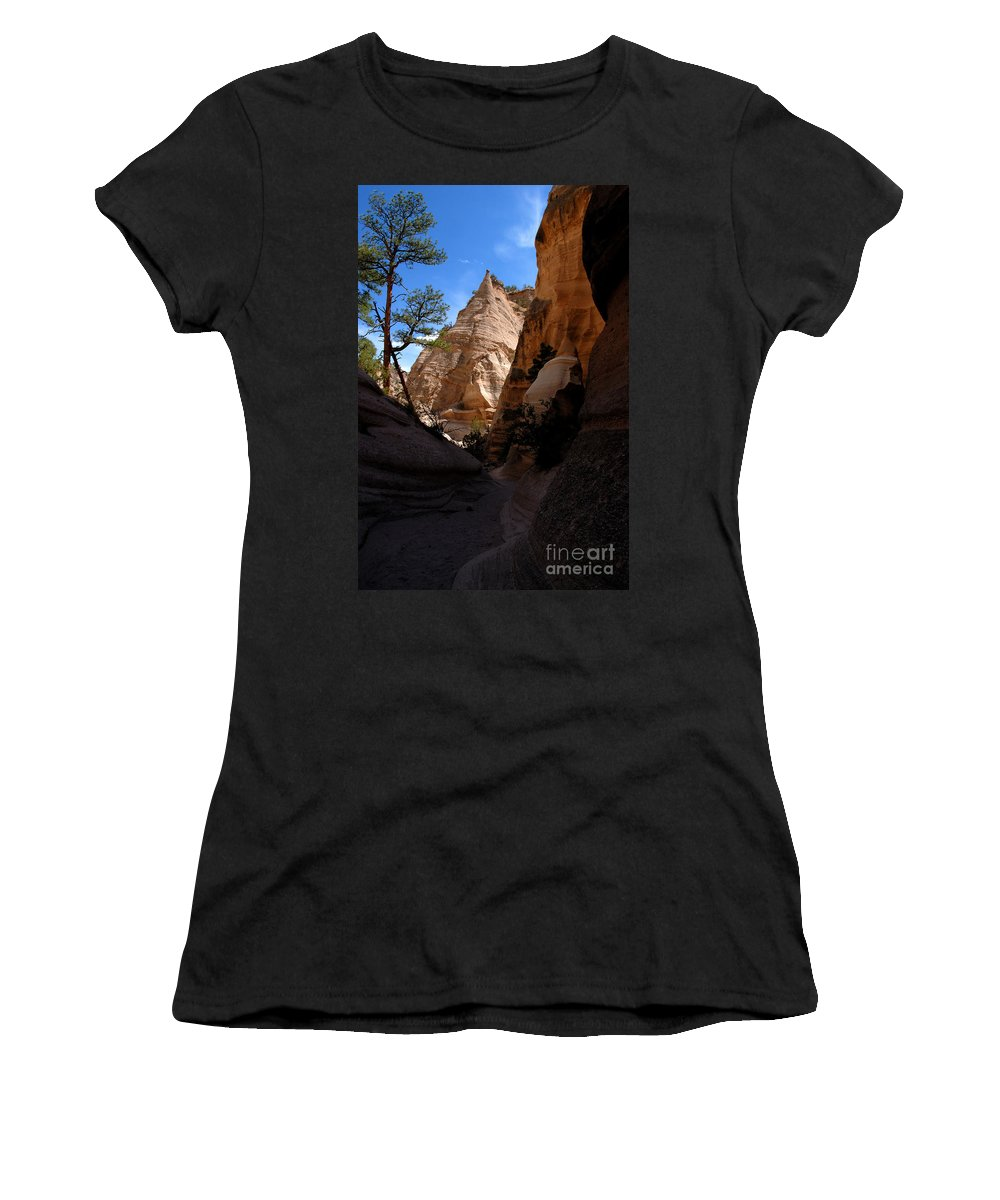Tent Rocks Wilderness New Mexico Women's T-Shirt (Athletic Fit) featuring the photograph Tent Rocks Canyon by David Lee Thompson